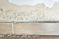 the cost of Tansor rising damp treatment